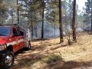 Wildland Fire 3-28-2014_1