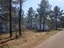 Wildland Fire 3-28-2014_2