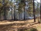 Wildland Fire 3-28-2014_3