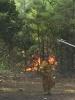 Wildland Fire 08-04-16_4
