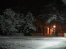 Snow Day 02-11-2010_5