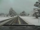 Snow Day 02-11-2010_9